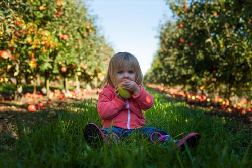 Decorative image of girl eating apple